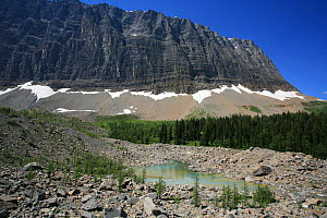 Glacial moraine with a small tarn and conifer forest and the Rockwall behind, Kootenay National Park, British Columbia, Canada. World Heritage Site July 2007  -  Alan Watson