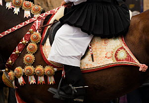 Close-up of the costume of a masked rider on a horse (Equus caballus) from the Gremio di Falegnami parades before the start of the 'Sartiglia' (race to the star)  in Oristano, Sardinia, Italy. Februar...  -  Kristel Richard