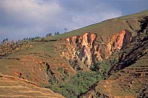 Severe erosion following tropical forest removal, Madagascar, Africa.  -  Visuals Unlimited