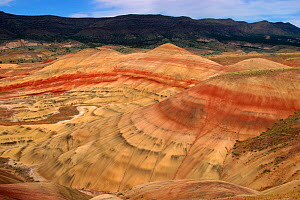 Folded paleosols or ancient soils (red layers) and siltstone of Eocene John Day Formation, John Day National Monument, Oregon, USA.  -  Visuals Unlimited