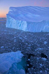 Large iceberg in Cierva Cove, Antarctica, at dusk, February 2009  -  Tim Laman