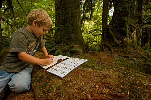 Boy (5 years) working on activity sheet in Olympic National Park, Washington, USA, August 2005, Model released  -  Tim Laman
