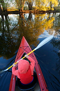 A boy kayaking on the Concord River in autumn, Massachusetts, USA, October 2006, model released - Tim Laman