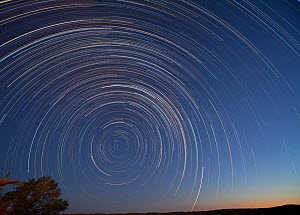 Stars in the southern hemisphere from the Kalahari Desert. The star in the middle of the rotation is the Southern Poler (Sigma octantis) It is one degree off true south. Southern Africa  -  Charlie Summers