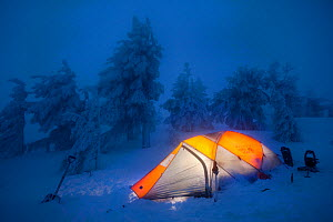 Twilight descends on photographer's mountain camp with light inside tent,  in Oregons highest mountain forest on Drake Peak at 8,500 feet. Oregon, USA, January 2010. - Floris van Breugel
