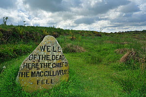One of the headstones that mark the mass graves of fallen Jacobite soldiers at the Culloden battlefield, Highlands, Scotland, UK, May 2010  -  Philippe Clement