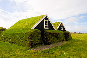 Houses with grass roof and walls, Snafellsness Peninsula, Iceland, July 2008  -  Inaki Relanzon