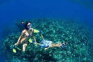 Couple free diving off the island of Lanai, Hawaii. Model released.  -  David Fleetham