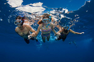 People free diving off the island of Lanai, Hawaii. Model released.  -  David Fleetham