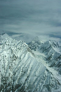 Aerial view of K2 and glaciated valley, Concordia, Karakoram Mountains, Himalayas, Pakistan. From Pakistani military helicopter for BBC series Planet Earth 2005  -  Jeff Wilson