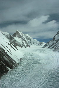 Aerial view of K2 and glaciated valley of Concordia, Karakoram Mountains, Himalayas, Pakistan. From Pakistani military helicopter for BBC series Planet Earth April 2005  -  Jeff Wilson