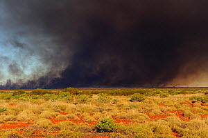 Smoke from bush fire in Pilbara region, Western Australia. August 2009  -  Jouan & Rius