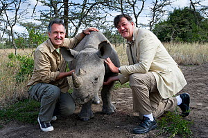 Presenters Mark Carwardine and Stephen Fry with Northern White rhinoceros (Ceratotherium simum) on location for television programme 'Last Chance to See: Return of the Rhino', Ol Pejeta Conservancy, K... - Mark Carwardine