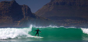 Man surfing off Cape Town coast, South Africa, January 2010. - Charlie Dailey