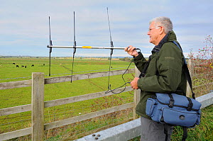RSPB volunteer Peter Broxholme radiotracking Common / Eurasian cranes (Grus grus) released by the Great Crane Project onto the Somerset Levels and Moors. Somerset, UK, October 2010. 2020VISION Book Pl...  -  Nick Upton / 2020VISION