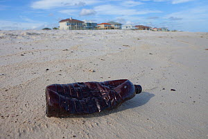 A plastic bottle covered in oil on a beach. This beach was repeatedly contaminated with oil by the BP Deepwater Horizon spill. Baldwin County, Alabama, USA June 2010. - Gerrit Vyn
