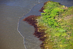 Aerial view of oiled and containment boomed salt marsh in the Baratari Bay area of the Mississippi River delta, contaminated as a result of the BP Deepwater Horizon leak. Plaquemines Parish, Louisiana...  -  Gerrit Vyn