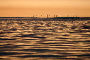 Wind turbines near Kilmore Quay viewed from boat at dawn. Co. Wexford, Republic of Ireland, Europe June 2010. - Guy Edwardes