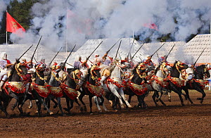 Traditionally dressed Berber warriors, mounted on Barb and Arab Barb horses, galloping in formation, firing guns during the Fantasia in Dar Es Salam, Morocco, June 2010 - Kristel Richard