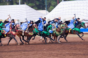Traditionally dressed Berber warriors, mounted on Barb and Arab Barb horses, galloping into battle with guns pointed down during the Fantasia in Dar Es Salam, Morocco, June 2010  -  Kristel Richard