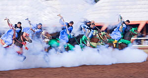 Traditionally dressed Berber warriors, mounted on Barb and Arab Barb horses, galloping into battle firing their guns down during the Fantasia in Dar Es Salam, Morocco, June 2010  -  Kristel Richard