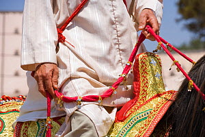 Close-up of the reins and saddle of a Berber warrior during the Fantasia, in Dar Es Salam, Morocco, June 2010 - Kristel Richard