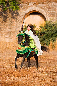 A young Berber woman rides a black Arab Barb stallion in Morocco. Both are dressed in traditional costume for the Fantasia. Model Released, June 2010  -  Kristel Richard