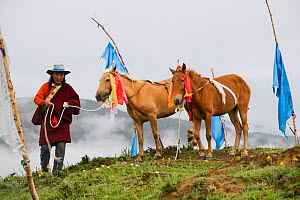 A Khampa warrior picks up his two Tibetan horses, before the endurance race, during the horse festival, near Huangyan, in the Garze Tibetan Autonomous Prefecture in the Sichuan Province, China, June 2...  -  Kristel Richard