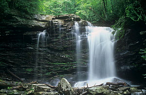 Middle Falls of Hills Creek, Cranberry Wilderness, West Virginia, USA.  -  Visuals Unlimited