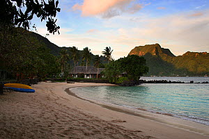 Beach in Pago Pago harbour, with Rainmaker Mountain lit by evening sun, American Samoa, Samoan Islands, August 2008.  -  Toby Roxburgh