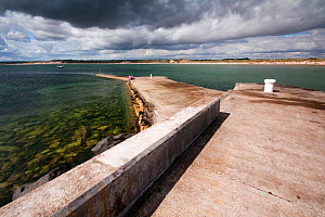 Beadnell Harbour, Northumberland Coast Area of Outstanding Natural Beauty (AONB), England, July 2010. - Toby Roxburgh