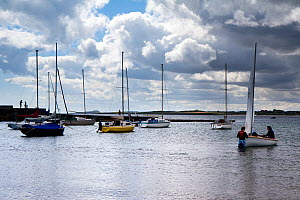 Yachts anchored off the beach at Beadnell, with Dunstandburgh Castle in the background to the south, Northumberland Coast Area of Outstanding Natural Beauty (AONB), England, July 2010. - Toby Roxburgh