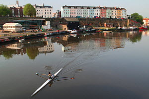 Rower with terrace of colourful houses on Redcliffe Quay beyond, reflected in the water of Bristol's floating Harbour in early morning, Bristol, England, May 2008. - Toby Roxburgh