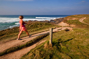Woman walking in the early morning along the South West Coast Path from Booby's Bay towards Trevose Head, Cornwall Area of Outstanding Natural Beauty (AONB), England, August 2010. Model released.  -  Toby Roxburgh