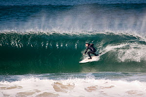 Surfer on a wave in Booby's Bay, Cornwall, England, August 2010.  -  Toby Roxburgh