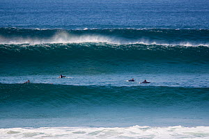 Swell lines at Booby's Bay, Cornwall, England, September 2010.  -  Toby Roxburgh