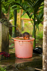 A child taking a bath in a large bucket. Waifoy Village, Waigeo Island, West Papua, Indonesia, April 2007 - Tim Laman