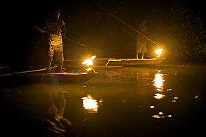 Men spearfishing at night from the bows of canoes in Mayalibit Bay. Waigeo Island, West Papua, Indonesia, April 2007 - Tim Laman