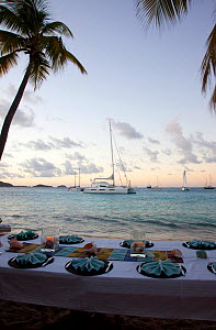 "Table set on beach for sunset dinner, with  Privilege 745 catamaran ""Matau"" anchored beyond. Tobago Cays, the Grenadines, Caribbean, January 2010. Property released.  -  Billy Black"