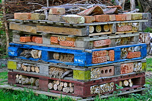 Insect hotel  / Artificial nest holes and shelter for insects and invertebrates, in garden, England, UK, August 2010  -  Adrian Davies