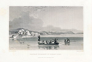 Illustration of Benjamin Franklin's 1825-1827 expedition to Richards Island, Canadian Arctic Islands, Canada.  -  Bryan and Cherry Alexander