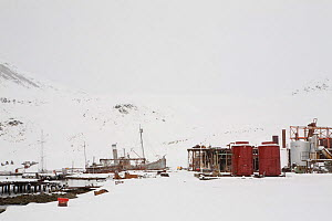 Abandoned whaling station at Grytviken, covered in snow, South Georgia, 2009.  -  Bryan and Cherry Alexander