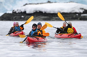 Tourists in double kayaks in Mikkelsen Harbour, Trinity Island, Antarctica, 2009. - Bryan and Cherry Alexander