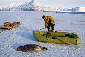 Yupik Eskimo hunter using inflatable boat to retrieve Ringed seal (Phoca Hispida) shot at the floe edge in Tkachen Bay. Chukotskiy Peninsula, Chukotka, Siberia, Russia, 2010 - Bryan and Cherry Alexander