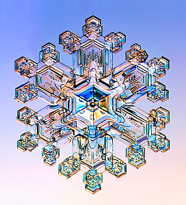 Snowflake  -  Visuals Unlimited