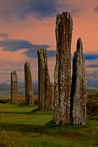 Standing stones in the Neolithic henge of the Ring of Brodgar, built between 2500 and 2000 BC and originally composed of some 60 stones although only 27 remain standing today. Orkney Islands, Scotland...  -  Charlie Summers