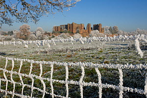 Kenilworth Castle viewed through fence, covered in hoar frost, Warwickshire, England, UK, December 2010 - John Cancalosi
