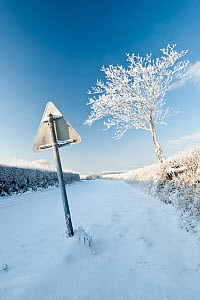 Road and road sign in snow, early morning light, nr Bradworthy, Devon, Uk. December 2010 - Ross Hoddinott