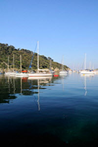 Sailing-boats moored at Port Cros Island with masts reflected in calm water. France, May 2010.  -  Nick Upton