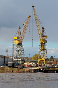 Cranes at Cammell Laird shipyard in Birkenhead. River Mersey, England, November 2010. - Norma Brazendale